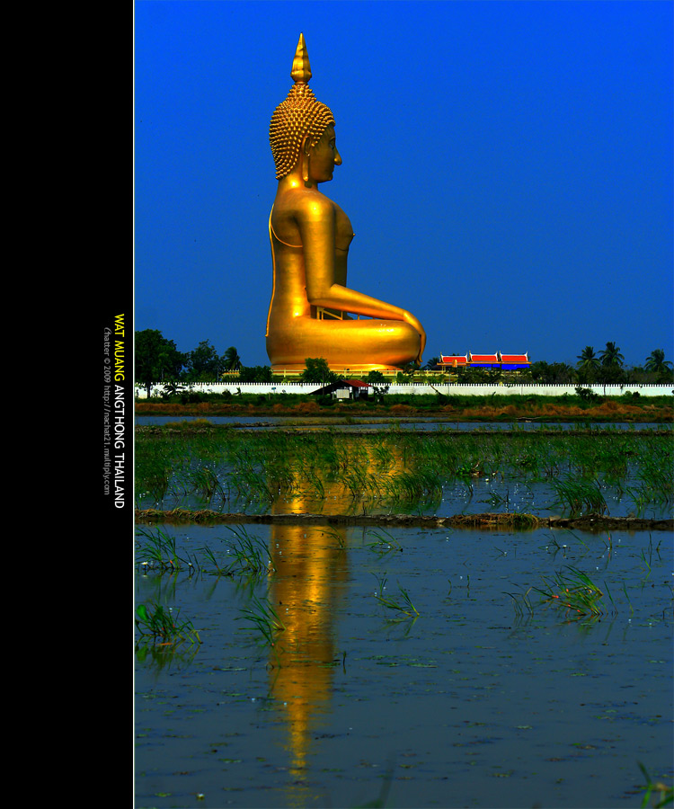 صنم شكران في الهند من الذهب الخالص !