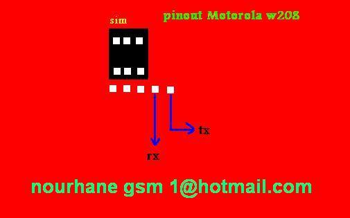 pinawt  Motorola W208