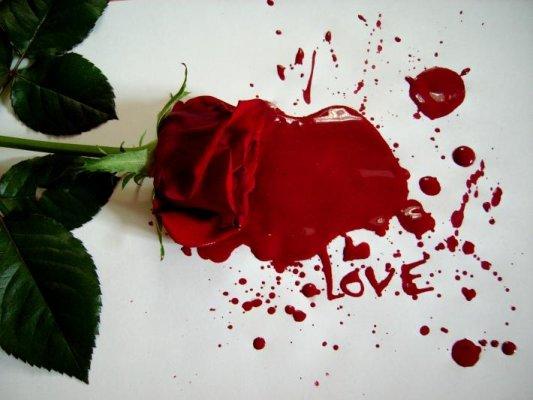 **** الحب ****