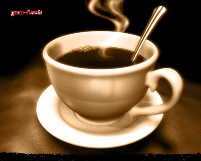 مقهى الجيم فلاش