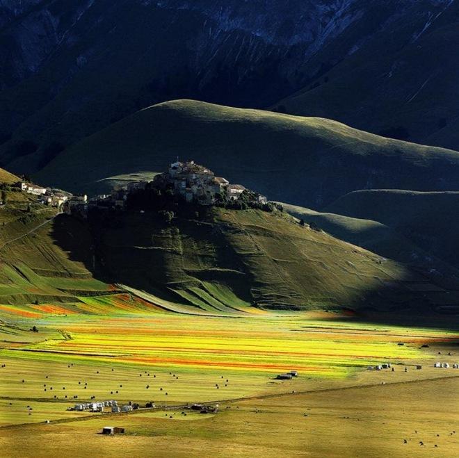 جمال الطبيعة تزدهي باللون الأخضر