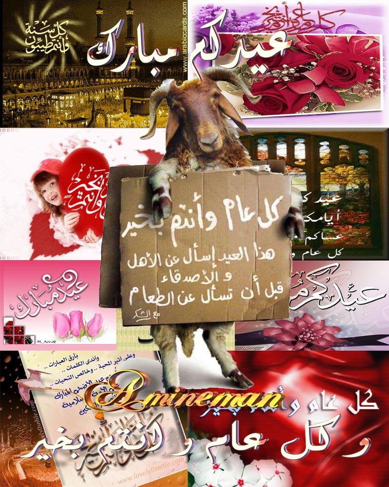 تهاني عيد الأضحى المبارك تصاميم ثابتة و متحركة لارسالها الى الاحباب