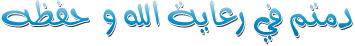 جديد: الاصدار الاخير لغة عربيه لهاتف نوكيا 203 RM-832 فيرجن 20.52