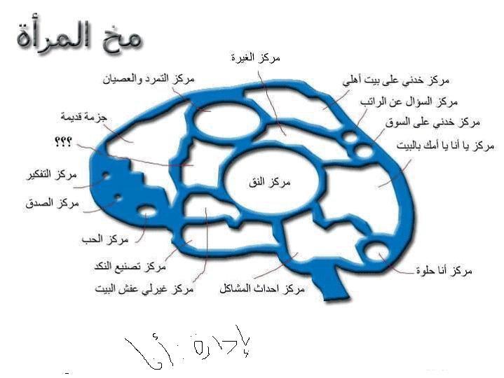 عقل المراة