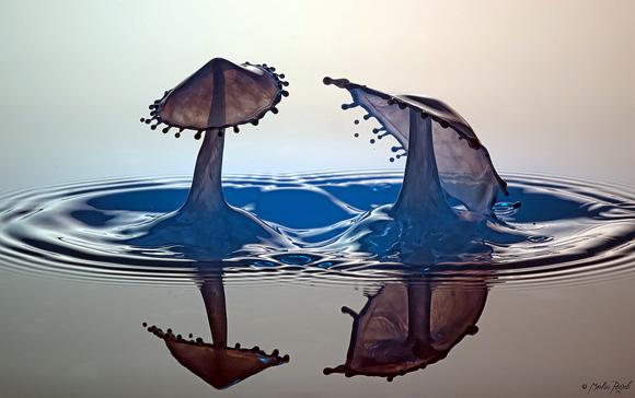 مجموعة صور مدهشة لقطرات الماء بالتصوير فائق السرعة!!
