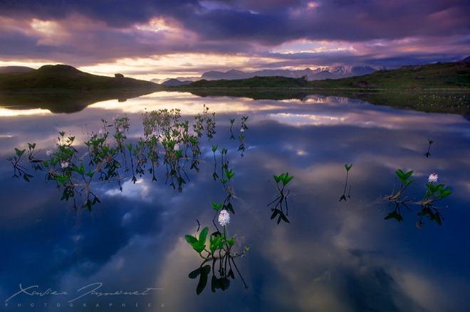 تصوير الطبيعة... 2