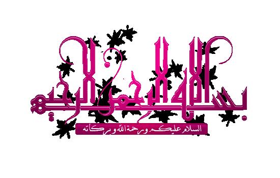 الفلاشة العربية لهاتف سامسونج s5610