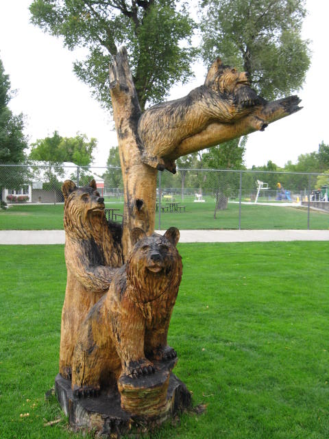 فن النحت على الاشجار و جمال الطبيعة