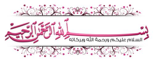 الفلاشة العربيه لهاتف سامسونج s5780