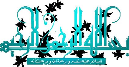 جديد:  الاصدار الاخير لغة عربية لهاتف نوكيا C2-01 RM-722 فيرجن 11.40