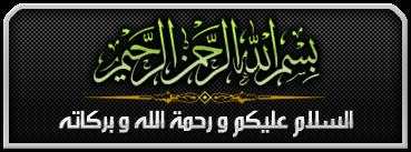 الفلاشه العربيه لهاتف s7230e