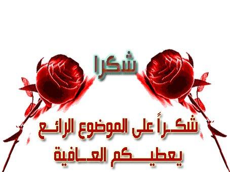 كتاب اساسيات اللغة الانجليزية الشرح بالعربية