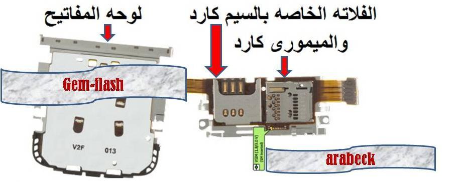 حصريا تشريح الجهاز c3.01