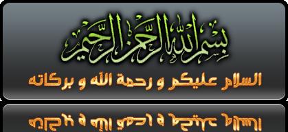 الاصدار الاخير لغه عربيه لهاتف x3-02 rm-639 فيرجن 7.15