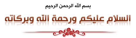 الفلاشه النادره والصحيحه للهاتف العنيد ZTE V795 Original