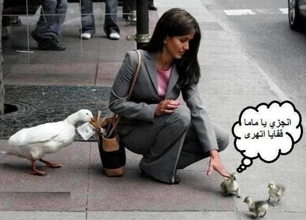 عصابة البط هههههههههههه