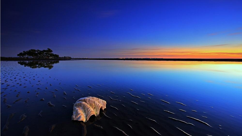 قذائف البحر